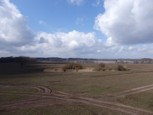 Between Gustrow and Waren (Muritz)