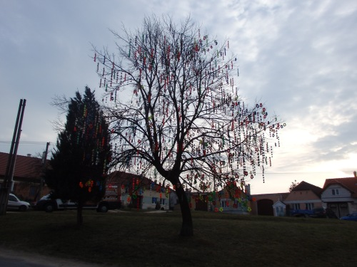 Easter egg tree between Mutisov and Znojmo