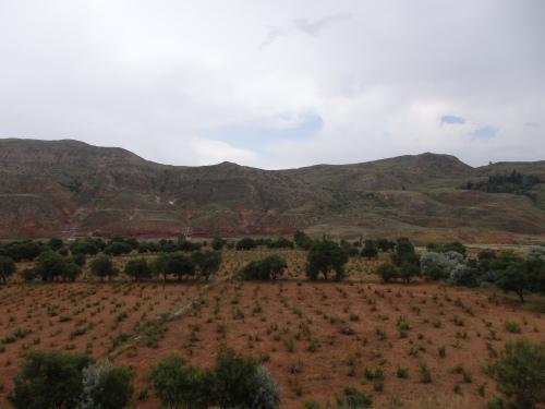 Red landscapes